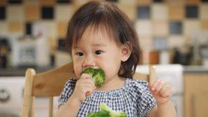 Amankah Cara Memberi Makan Bayi Pakai Baby Led Weaning yang Lagi Tren Diikuti Emak-emak Zaman Now?