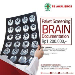 Paket Screening Brain Documentation